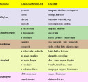 classificazione-strumenti-small